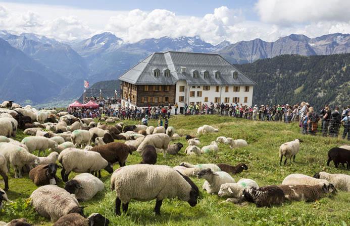 восхождение в Альпы в Италии